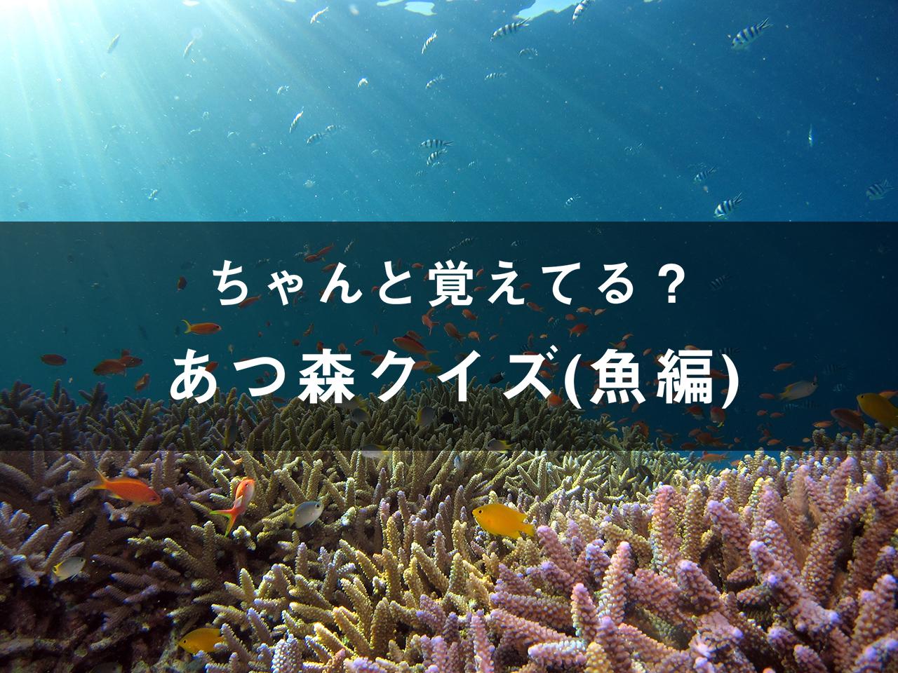 覚えてる?あつ森クイズ(魚コメント編)