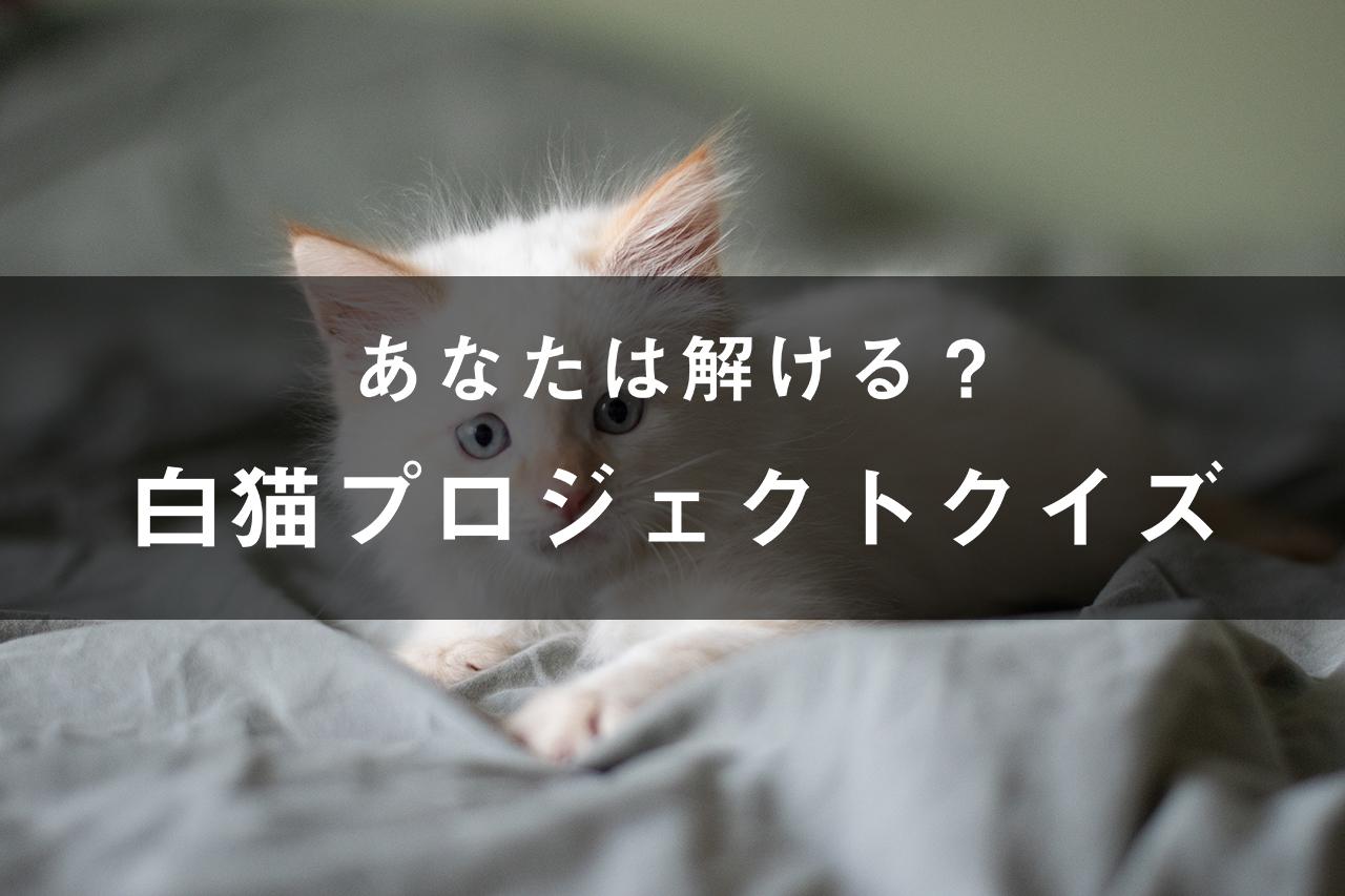 白猫プロジェクトクイズ