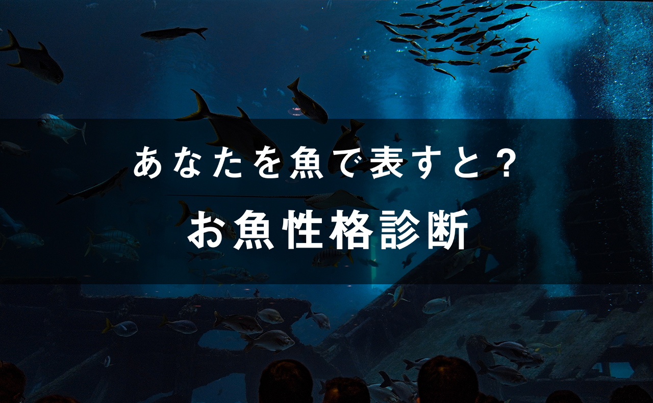 あなたを魚で表すと!?お魚性格診断